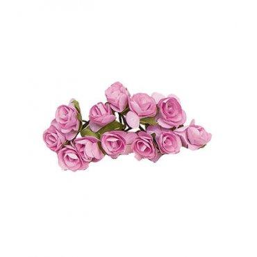 Fleur Décoration Rose