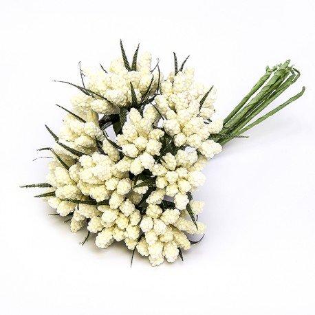 Fleurs Décoration Souvenirs